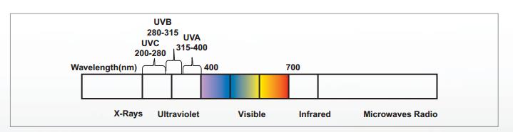 UV Process