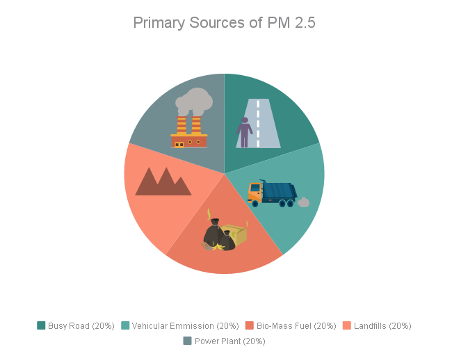 primary source of PM2.5