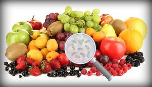 Germs in Fruits and Vegetables