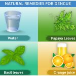 Natural Remedies for Dengue