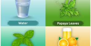 Natural Remedies for Dengue