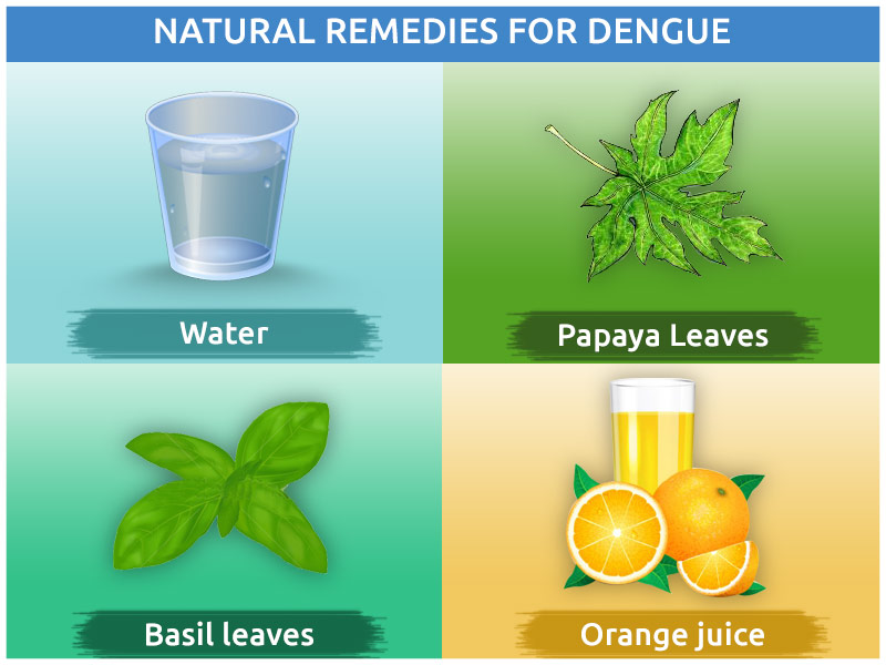 Natural Remedies for Dengue Fever Treatment at Home