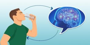 connection between dehydration and brain health