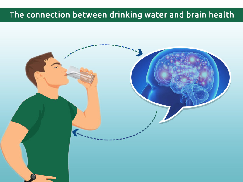 The connection between dehydration and brain health