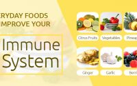 Foods to improve immune system
