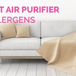 Perfect-Air-Purifier-for-Allergens