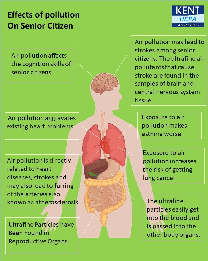 Health Problems of senior citizens due to air pollution - Infographic