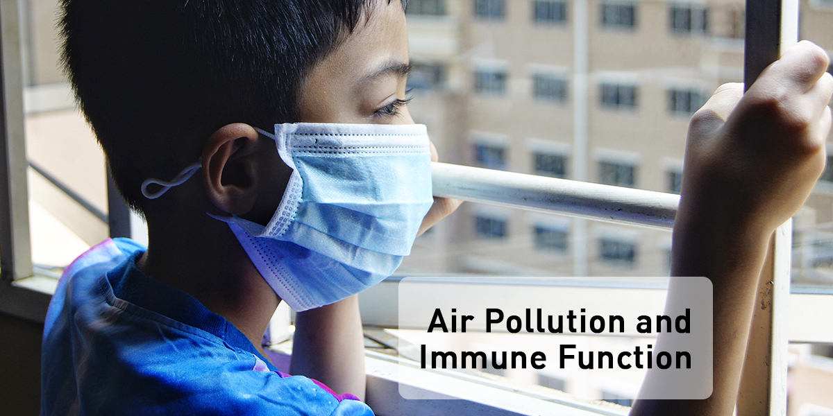 How does air pollution affect immune system