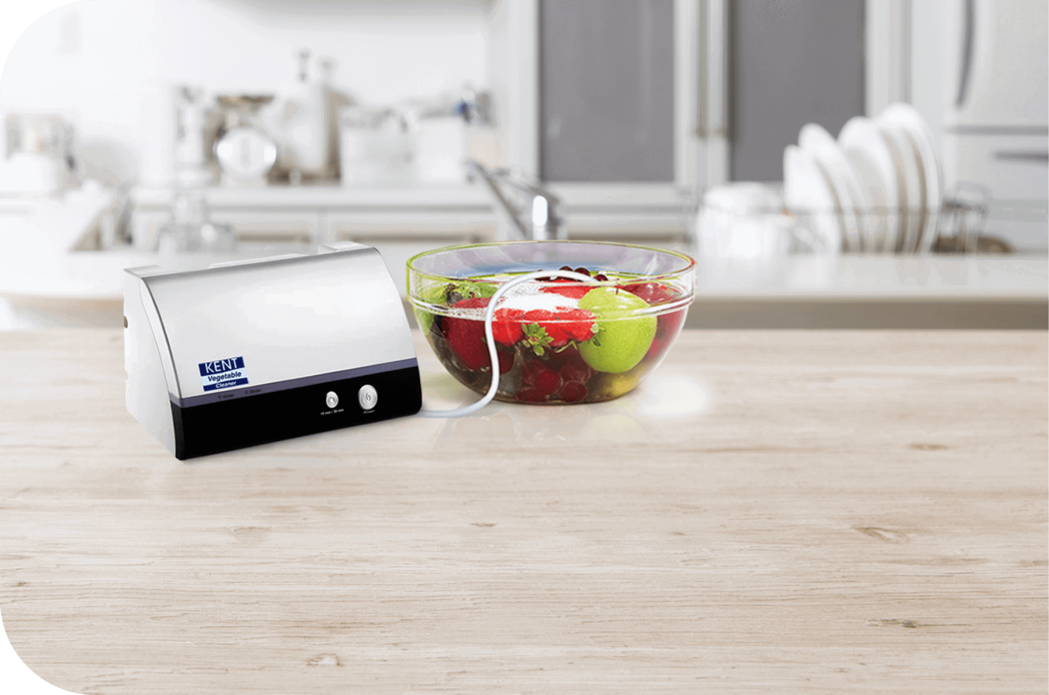 Counter Top Vegetable and Fruit Purifier